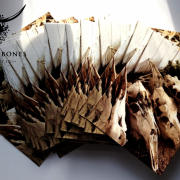 10 Postcards: Row of the unreborn - Sana an ni'kalyndua'n