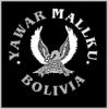 YawarMallku-Stockholm
